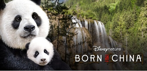 Born-In-China