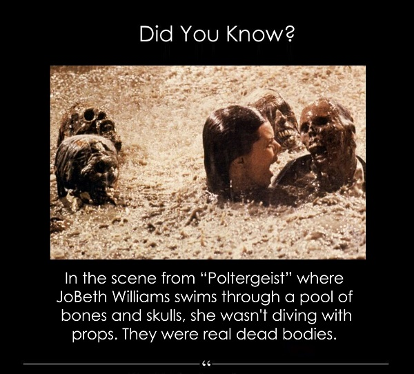 real skeletons on poltergeist